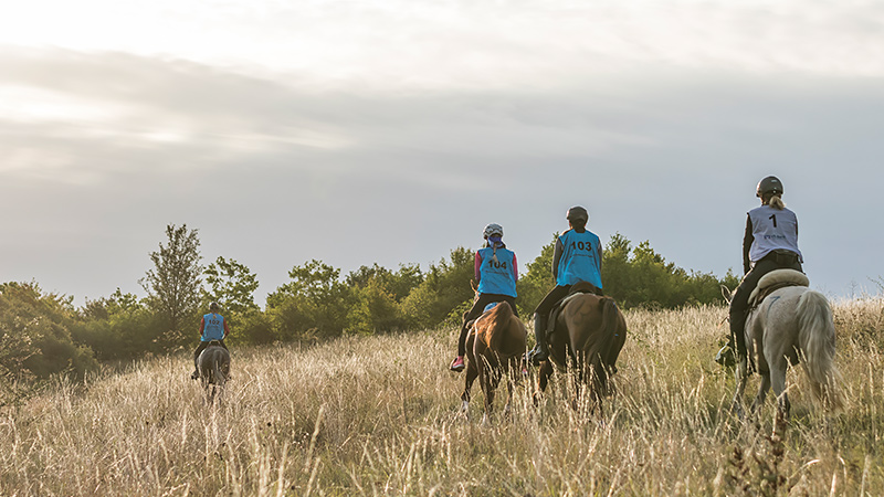 Endurance Ride Possen 2019